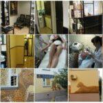 Салон красоты Fashion Studio Leo фото